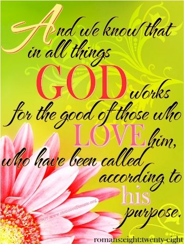 """""""And we know that in all things God works for the good of those who love him, who have been called according to his purpose."""" Romans 8:28 NIV: God Creations, Scriptures Ver, God Love, Quote, Favorite Scriptures, Memories Ver, Romans 828, Bible, Romans 8 28"""