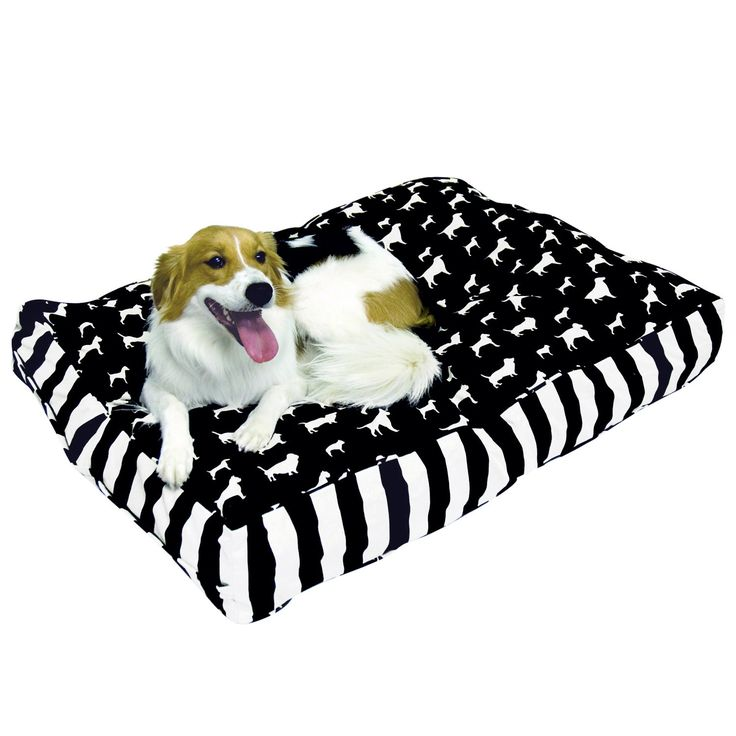 Our best dog beds blankets deals cool dog beds white