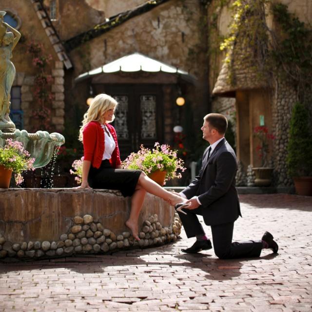 Favorite Disney Cinderella engagement picture!