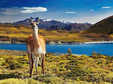 Estas 16 fotos harán que te preguntes por qué no has visitado Chile aún