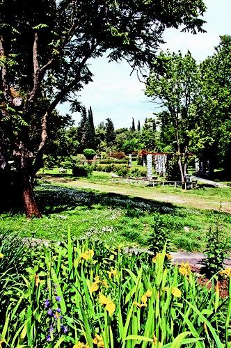 ΤΟ ΒΗΜΑ - Οι θησαυροί του κήπου - science - Βοτανικός κήπος