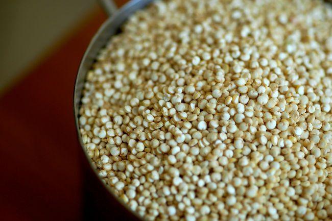 Quinoa: todo sobre la semilla. Propiedades nutricionales, beneficios para la salud y para prevenir enfermedades y cómo usarla en la cocina....
