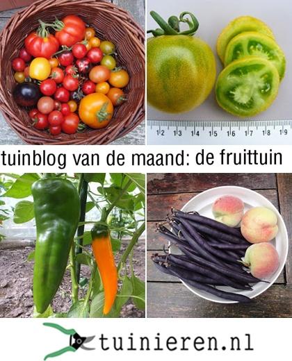 Tuinblog van de maand: De Fruittuin