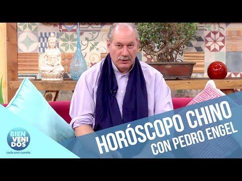 Pedro Engel | Compatibilidad del acto sexual en el horóscopo chino  #Bienvenidos #LoopCanal13 #Matinal #Programas Horoscopo Chino