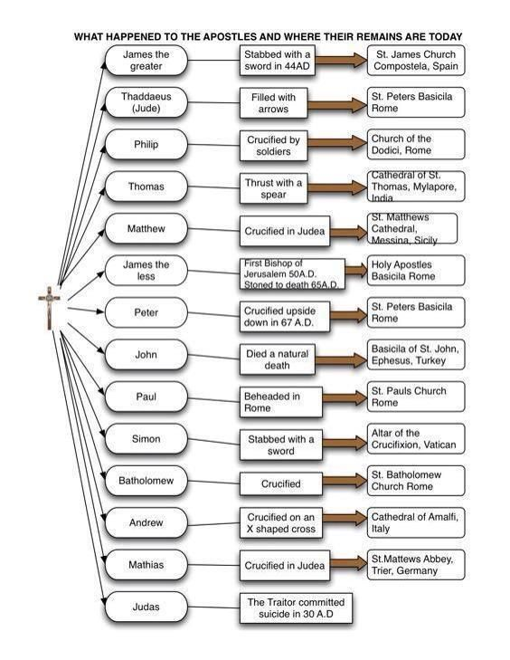 The Apostles ~ chart by Dr. Scott Hahn showing the traditional understanding regarding the Apostles' deaths and repose.