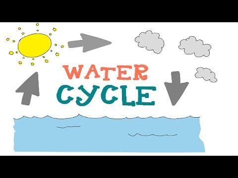 The water cycle for kids : funza Academy Science Videos - YouTube. his short clip gives a detailed overview of the three phases of the water cycle, evaporation, condensation and precipitation. It uses two experiments; a beaker of water left in the sun and boiling water on the stove to illustrate the water cycle. Not a lot of focus in on the water cycle in our environment.