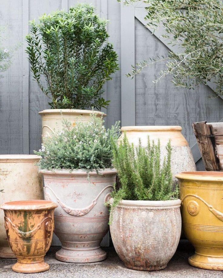 Les 25 meilleures id es concernant poterie anduze sur - Poterie terre cuite jardin ...