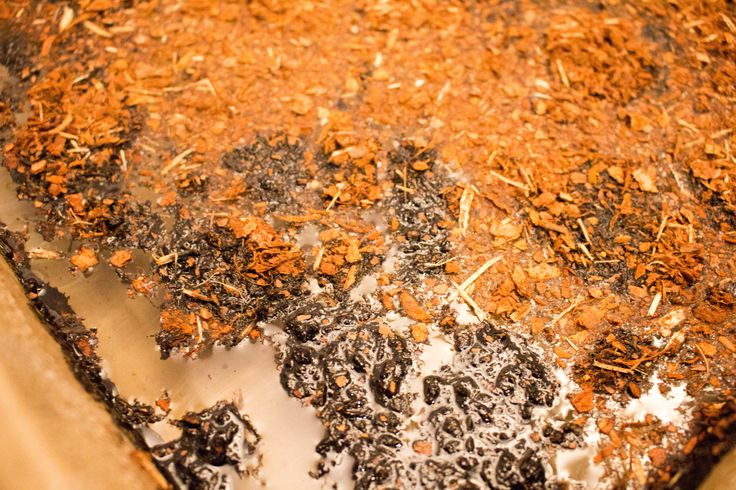 Sorbent pełni naturalny produkt wytwarzany z kory naturalnej, bez dodatku preparatów chemicznych. Charakteryzuje się wysokimi właściwościami chłonnymi w przypadku olejów, benzyny, nafty, płynów obróbkowych, płynów chłodzących, emulsji, płynów płuczących i farb. Zapraszamy do on-line: www.ikapol.net/sorbenty
