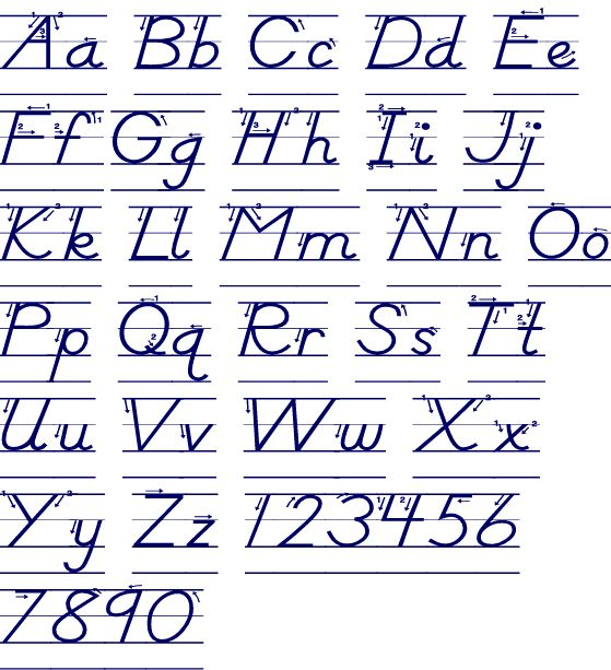 50 best D Nealian Handwriting images on Pinterest