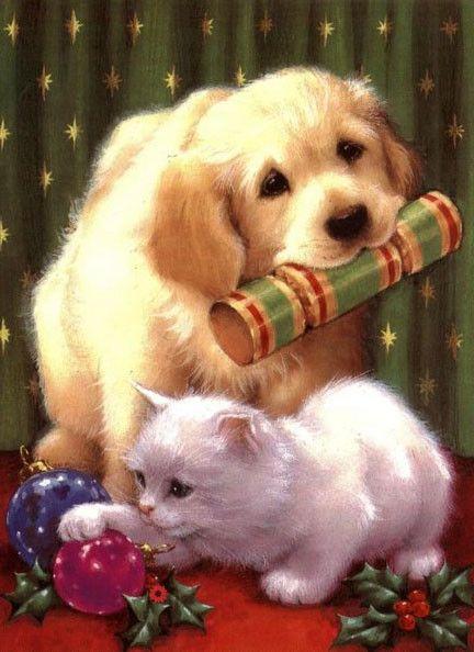 Chaton et chien de Noël