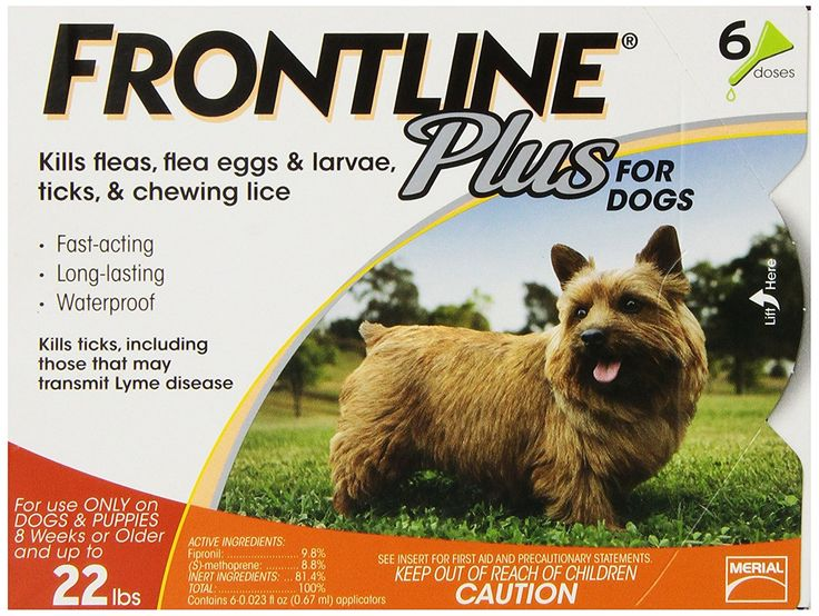Frontline DFRSMPLUS6 6-Pack 11 to 22-Pound Plus Dog Flea and Tick Treatment, Small, Orange >>> Hurry! Check out this great product : Heartgard for dogs