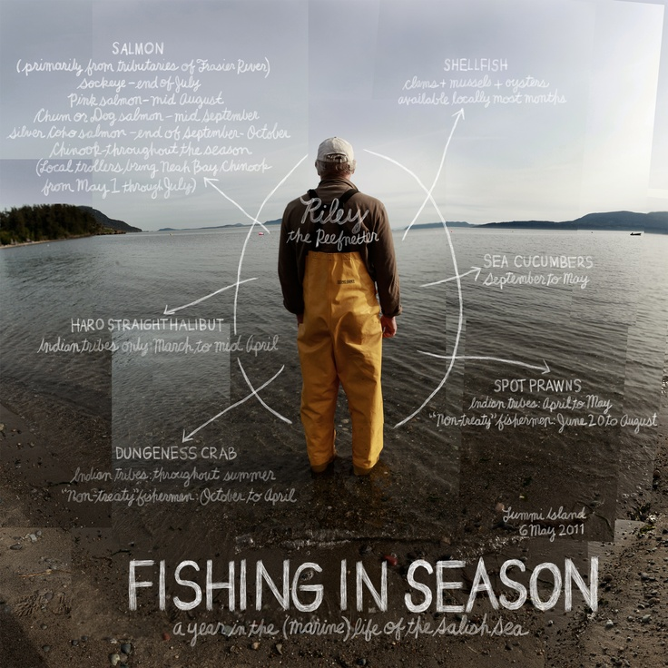 17 best images about bellingham washington on pinterest for Washington fishing season