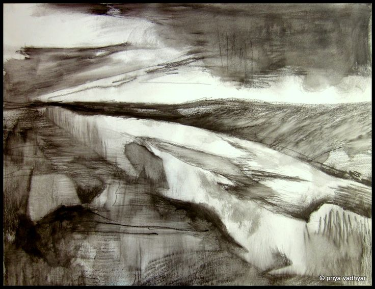 "in a landscape. unexpected. watersoluble graphite on paper, 18x24"" 2013 priya vadhyar"