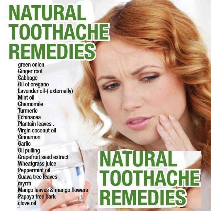 Natural Toothache Remedies These Natural Herbs Food And