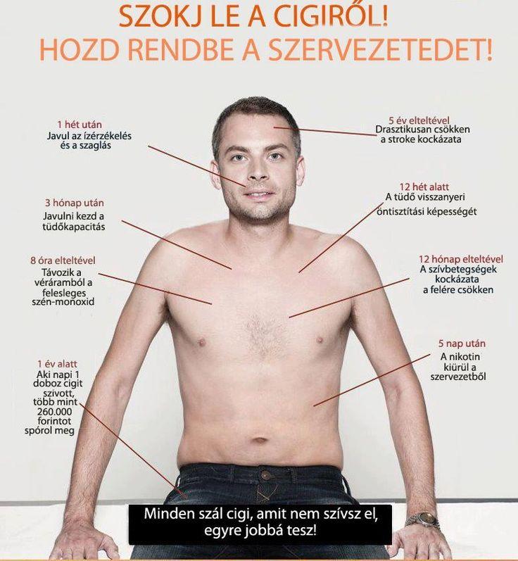 Tedd le még ma, élvezd a tiszta  levegőt és segíts társaidnak is!  http://testunk.e-goes.com/cigaretta-ellen/