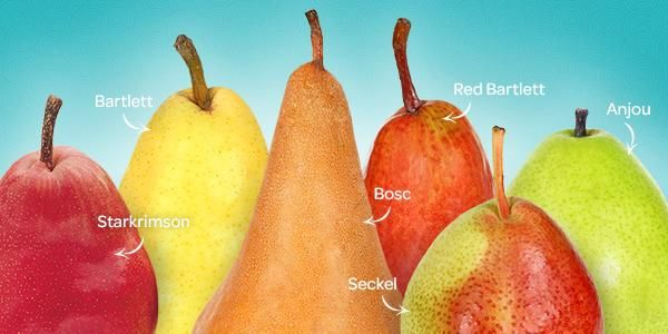 Pear Variety Guide: Find the perfect food and wine pear-ing for every variety!  | Superfresh Growers