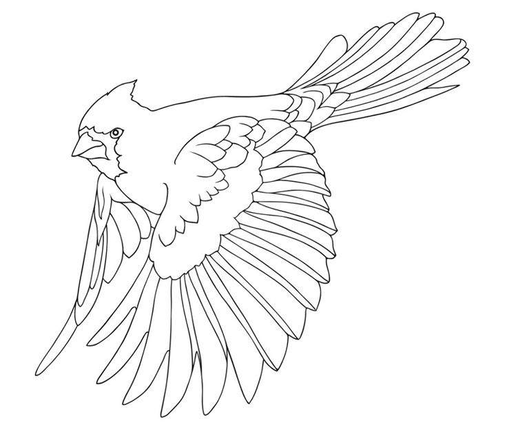 456 best Download - Coloring Pages images on Pinterest ...