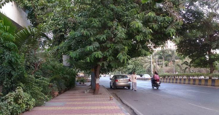 Нави Мумбаи. Неруль./Navi Mumbai. Nerul