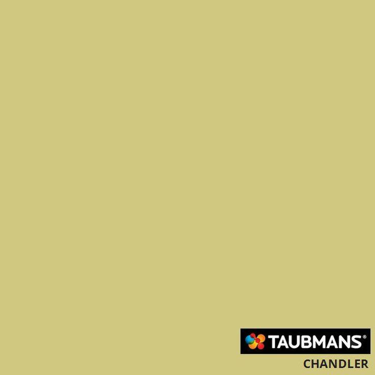 #Taubmanscolour #chandler