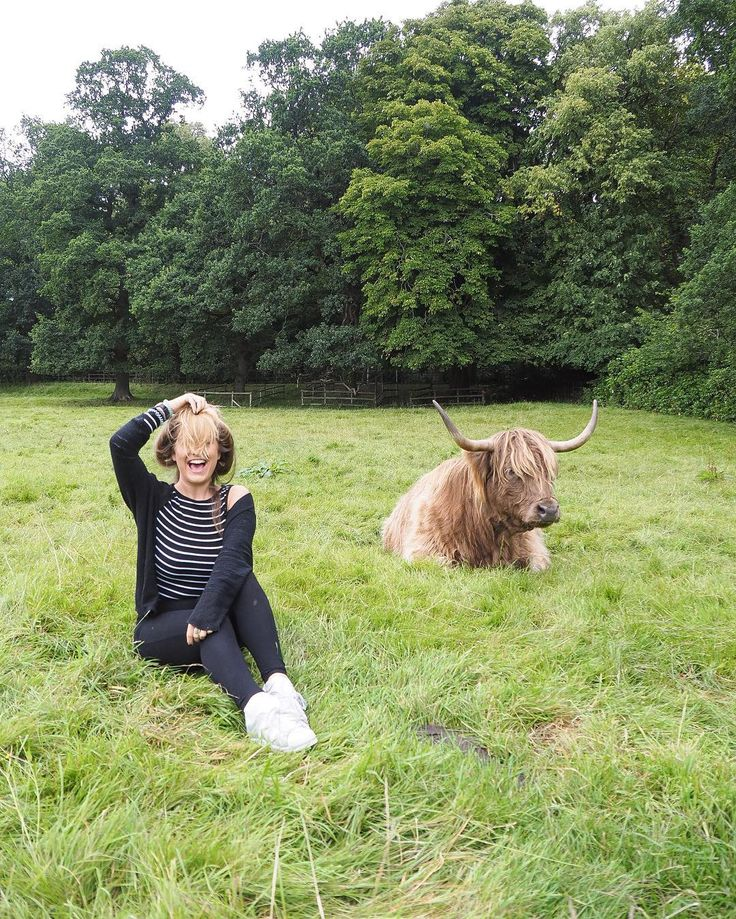 Why's he copying my hairstyle? 🐮🦁 Myself + @girlvsglobe went searching for 'hairy coos' this morning {Scottish Highland Cattle}. I think we look cute together? #MollieInScotland @girlsthattravel #📷 #hellohomestay