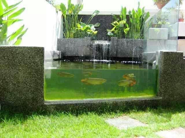 Ideas Pond Modern Fish