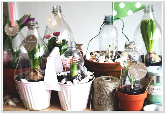 Little Greenhouse {Upcycling Dienstag} by http://titatoni.blogspot.de/