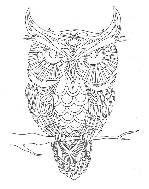 Pre Framed Owl Coloring Page By Syvanahbennett On Etsy
