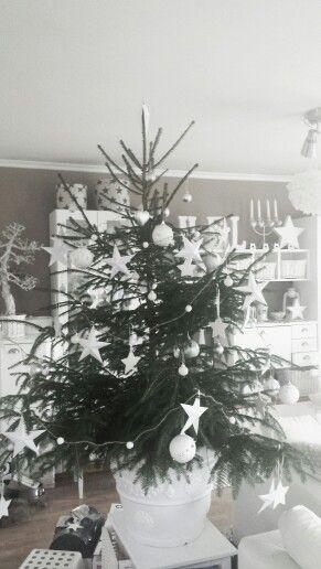 Christmas tree ☆☆☆ 2014