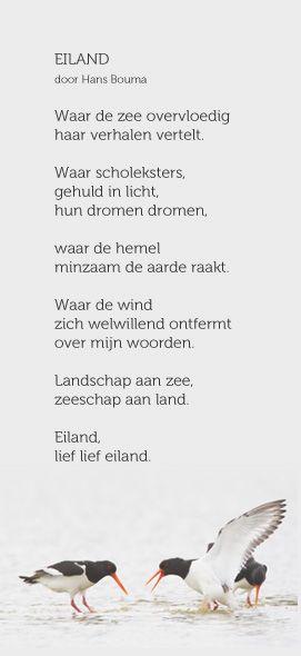 Eiland - Hans Bouma