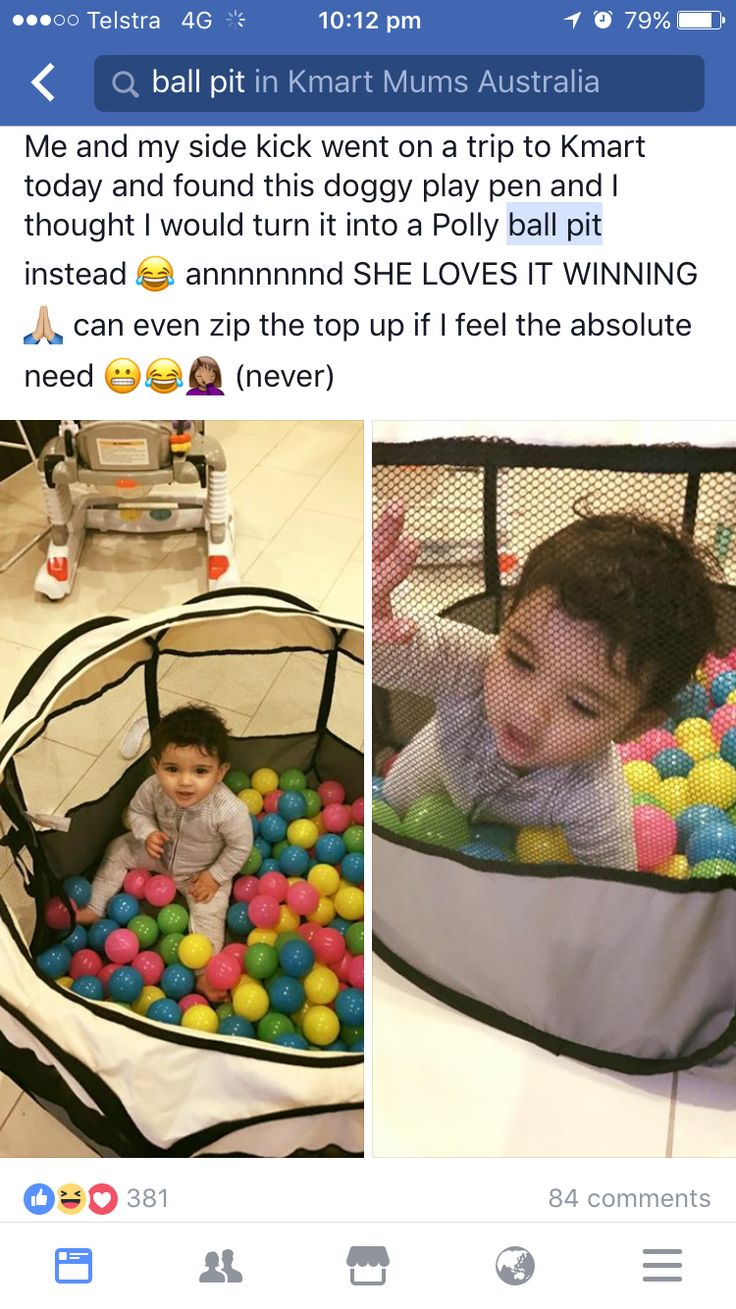 Pet pen used as a portable ball pit