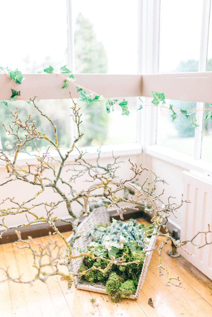 120 best winter gardens images on pinterest winter garden