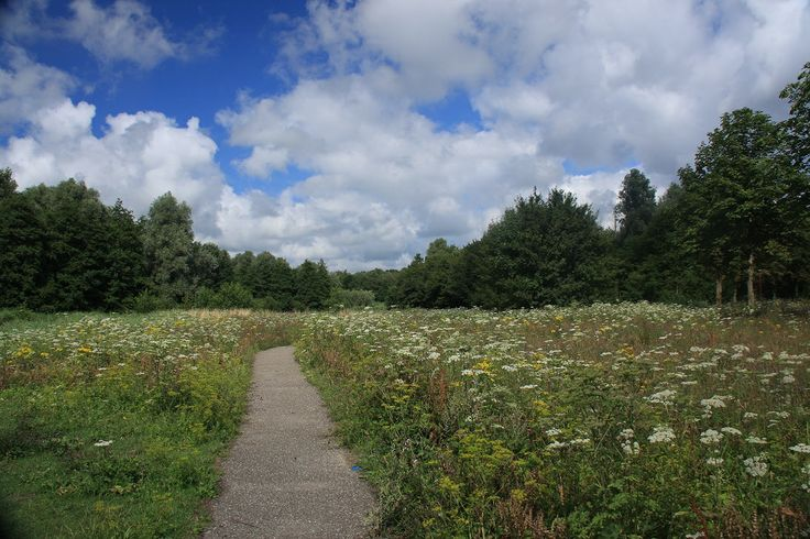 Wandelpad Westerpark.