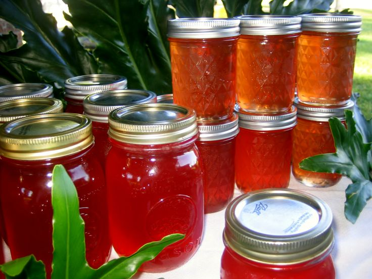 Mayhaw Jelly - one of 2 official Louisiana state jellies -- Louisiana Sugar Cane Jelly being the other one.