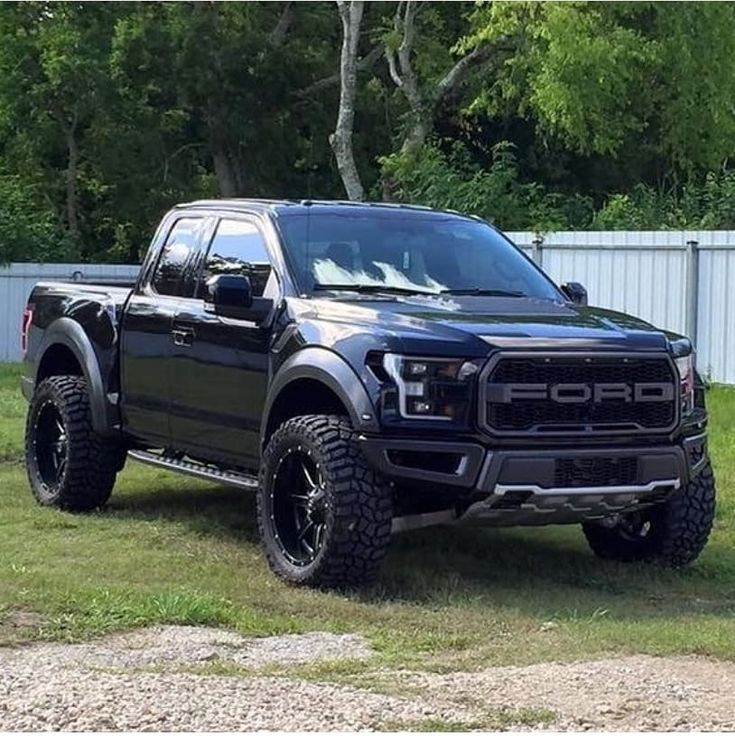 Ford F150 Raptor in 2020 Ford trucks, Ford trucks f150