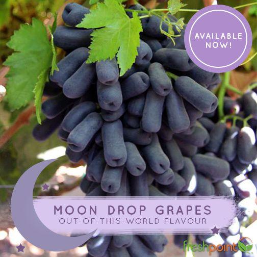 moon drop grapes - Google Search