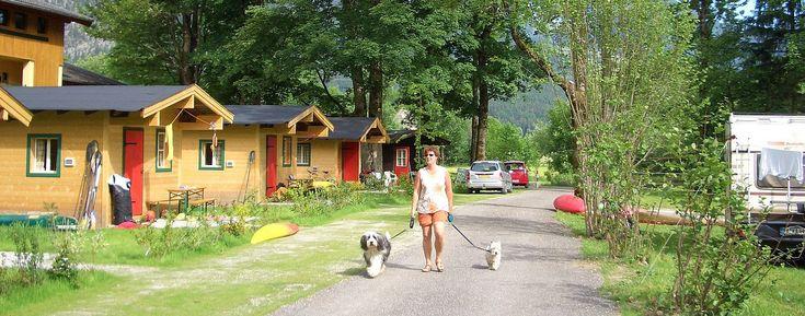 Kampeerster tijdens het wandelen met honden op Camping Park Grubhof