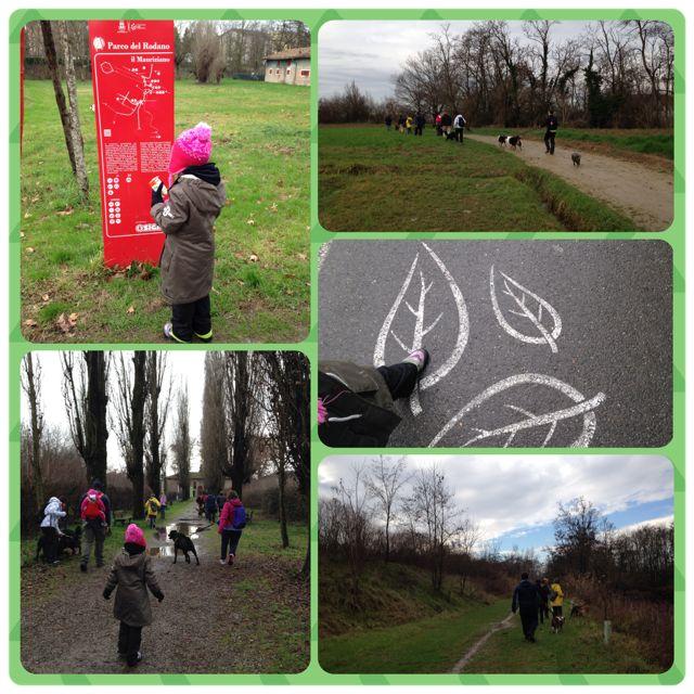 Parco del Rodano - Walk with the dogs