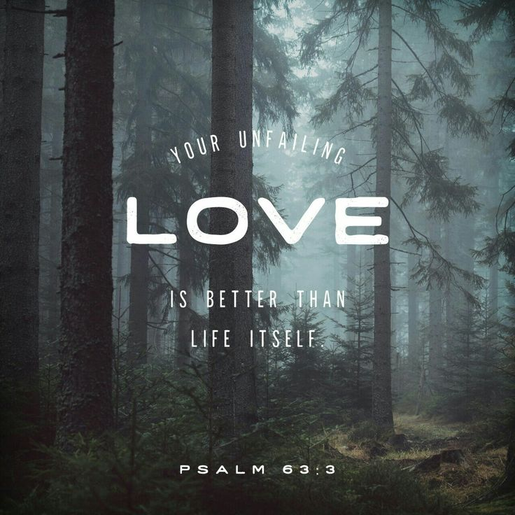So here I am in the place of worship, eyes open, drinking in your strength and glory. In your generous love I am really living at last! My lips brim praises like fountains. I bless you every time I take a breath; My arms wave like banners of praise to you. Psalm 63 MSG http://bible.com/97/psa.63.3-4.MSG