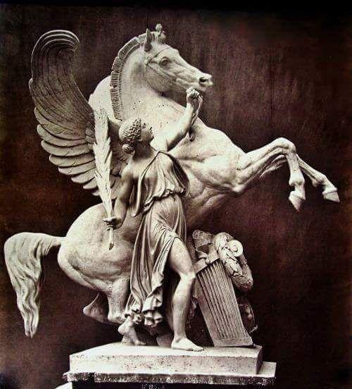 Eugene Lequesne -Pegasus