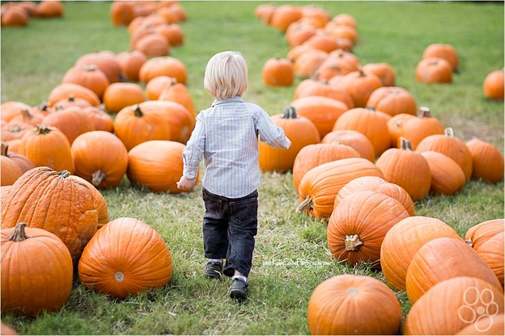 Images of children in a pumpkin patch| Austin Child Photographer | Katie Eaton Photography-5