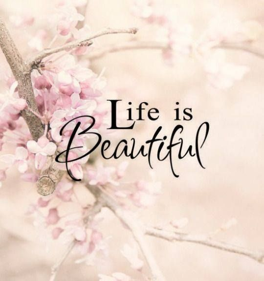 Beautiful Madam In Beautiful Garden Quotes: 340 Best Images About Life On Pinterest