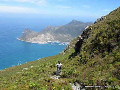 Walking the Cape: Silvermine: Constantiaberg