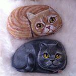 Hepsi bir araya toplanmış#kedi#köpek #baykuş #doğal #taş #boyama #stoneart #dekoratif taş boyama #elyapımı #handmade #tasarım #animallovers #hayvanseverler #tagstagram #instalike #rockpainting #gününkaresi