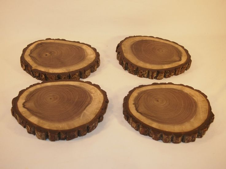 """4 Black Walnut wood slices, 6"""" by 7"""" finished tree slices, rustic decor"""