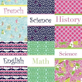 Binder covers. I just need to remember this for Avery when she gets older! Way more genius and cuter than writing on the binder!