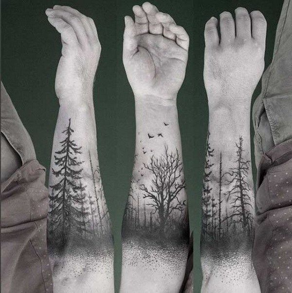 25+ great ideas about Evergreen Tattoo on Pinterest | Tree ...