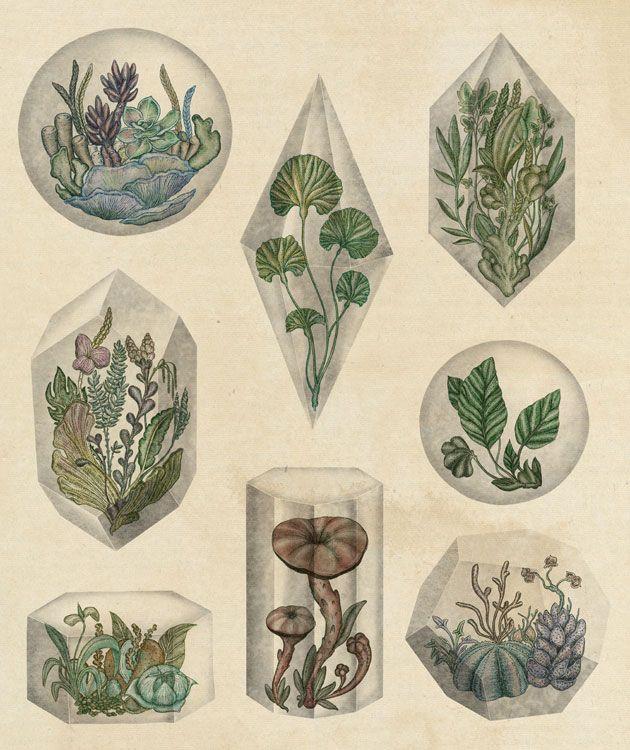 El concepto natural de Katie Scott | Undermatic
