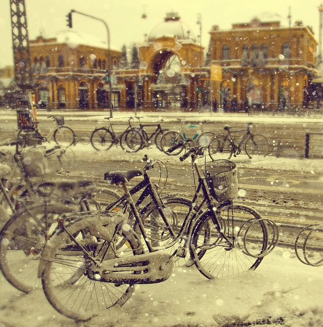Winter bicycles (Copenhagen, København, CPH, KBH, Danmark, Danish, Denmark, travel, Europe, city, capital, visit, beautiful)