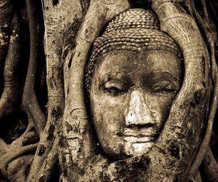 head-of-buddha concrete statue