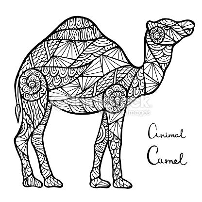 Vector Art : Stylized vector camel, zentangle isolated on white background.